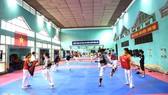 Các tuyển thủ quốc gia Việt Nam có cơ hội cọ xát đỉnh cao  nếu các đoàn VĐV quốc tế được phép đến tập huấn