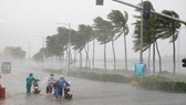 16 giờ ngày 5-11, bão số 10 mạnh cấp 8, giật cấp 10 ngay trên vùng biển từ Quảng Ngãi đến Khánh Hòa