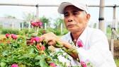 Người dân ở làng hoa Bình Lâm, xã Phước Hòa, huyện Tuy Phước, Bình Định trồng nhiều loài hoa mới phục vụ thị trường tết. Ảnh: NGỌC OAI