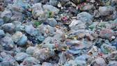 Triển khai kế hoạch hành động quản lý rác thải nhựa