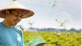 Một nông dân Thái Lan sử dụng các phần mềm tưới cây bằng drone