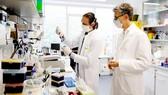Một phòng nghiên cứu vaccine ở Đức