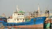 Bà Rịa - Vũng Tàu: Giãn nợ cho doanh nghiệp và chủ tàu cá