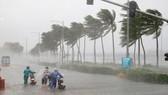 Dự báo: 22 giờ ngày 11-9, tâm bão số 5 ngay trên vùng biển từ Quảng Trị đến Quảng Ngãi