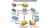 Phát triển chuỗi cung ứng lạnh để tiết kiệm thực phẩm