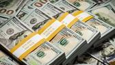 Việc chào mua ngoại tệ giao ngay là một trong những nghiệp vụ mới được Kho bạc Nhà nước áp dụng.