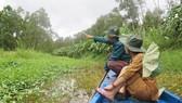 Tourists visit a melaleuca forest in U Minh Hạ National Park, Vietnam.PHOTO: VNA/VNS PHOTO MINH HƯNG