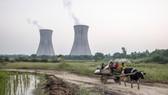 Nhà máy điện than Dadri của công ty NTPC Ltd. tại Gautam Budh Nagar, Uttar Pradesh, Ấn Độ - Ảnh: Getty Imags