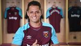 """Javier Hernandez đang được xem là """"món hời"""" chất lượng với West Ham."""