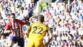 Torres và pha đánh đầu ghi bàn vào lưới Brighton.