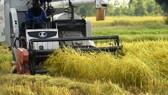 Ưu tiên nông nghiệp hiện đại