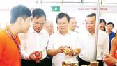 Phó Thủ tướng Trịnh Đình Dũng thăm các gian hàng tại Hội chợ cá tra và các sản phẩm thủy sản Việt Nam