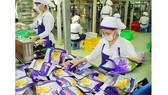 Doanh nghiệp xuất nhập khẩu vào cuộc