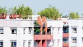 Xây dựng chung cư xanh - xu hướng tất yếu