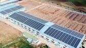 Điện mặt trời trên mái nhà:  Điện lực có trách nhiệm kiểm tra, giám sát vận hành