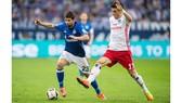 Hamburg (phải) sẽ phải chơi trận chung kết ngược với Wolfsburg vào cuối tuần này.