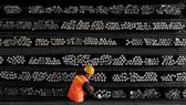 EU áp thuế chống bán phá giá mới đối với thép Trung Quốc. Ảnh: Reuters