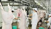 TPHCM sẽ đưa vào hoạt động 6 nhà máy giết mổ gia súc quy mô công nghiệp hiện đại.