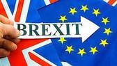 Doanh nghiệp Anh thử nghiệm kế hoạch hậu Brexit
