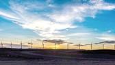 Kenya đã đưa vào hoạt động trang trại điện gió lớn nhất châu Phi