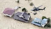 Nhiều hoạt động tìm kiếm, cứu nạn đang được khẩn trương tiến hành tại các khu vực Đông Bắc, Trung và Đông Nhật Bản