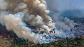 Australia: Nguy cơ nắng nóng và cháy rừng trầm trọng