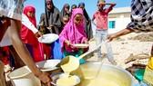 Trẻ em châu Phi nhận bữa ăn tại một trường học thông qua Chương trình WFP. Ảnh: REUTERS