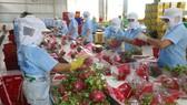 Tăng cơ hội xuất khẩu cho nông sản Việt