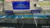 Khu vực thí điểm làm sạch sông Tô Lịch bằng công nghệ Nano-Bioreactor. Ảnh: Giaothong