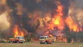 Cháy rừng ở Australia được xem là thảm họa thiên nhiên lớn nhất trong năm 2019