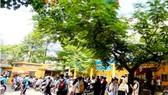 Trường học có thể vận động quỹ chăm sóc cây xanh