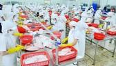 Tận dụng ưu đãi thuế quan xuất khẩu