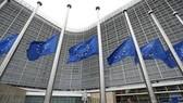 Hội nghị thượng đỉnh EU còn nhiều khác biệt