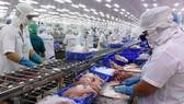 Tái xuất thủy sản vào thị trường Saudi Arabia sau gần 3 năm