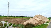Khu đất lúa hơn 1,1ha bị Công ty Dương Vũ san lấp cát trái phép