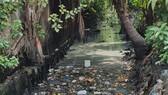 Rác thải các loại, thùng mốp, bao ni lông, xác súc vật, ghế sa lông… đã gom tụ trên mặt nước một đoạn dài hàng chục mét trên đoạn kênh này