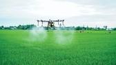 1/3 đất canh tác trên thế giới có nguy cơ ô nhiễm thuốc trừ sâu