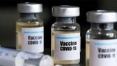 Xây dựng hệ thống vận chuyển vaccine cho các nước đang phát triển