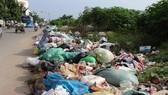 Vứt rác bừa bãi tại 1 Khu công nghiệp ở quận Tân Phú, TPHCM