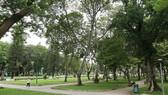 TPHCM đầu tư xây mới 12ha công viên và mảng xanh
