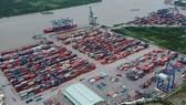 Số container tồn tại Tân Cảng Cát Lái giảm 15%