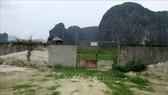 Khu vực thuộc Dự án Nhà máy Xi măng Thanh Sơn hiện trạng là bãi đất hoang, cây cỏ mọc um tùm. Ảnh: TTXVN