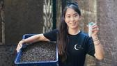Chua Kai-Ning làm việc trong trang trại côn trùng