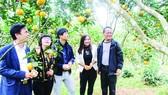 Khách tham quan một mô hình sản xuất nông nghiệp hiệu quả ở huyện Vũ Quang, tỉnh Hà Tĩnh