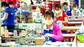 Doanh nghiệp mong lãi suất giảm hơn nữa để nhanh chóng phục hồi kinh tế. Sản xuất tại công ty dệt may Nguyên Dung, quận 12. Ảnh: HOÀNG HÙNG