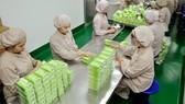 Sản xuất tân dược tại một đơn vị cung ứng bình ổn thị trường