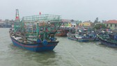 Nhật Bản bàn giao đèn LED cho 40 tàu đánh bắt xa bờ ở Quảng Trị