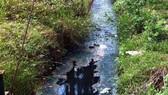 Xả thải ra sông Côn, nhà máy đường BISUCO bị phạt 1,9 tỷ đồng