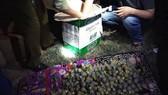Nghệ An: Thu giữ gần 200kg pháo trên xe đầu kéo