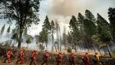 Mỹ đóng cửa công viên quốc gia Yosemite do cháy rừng